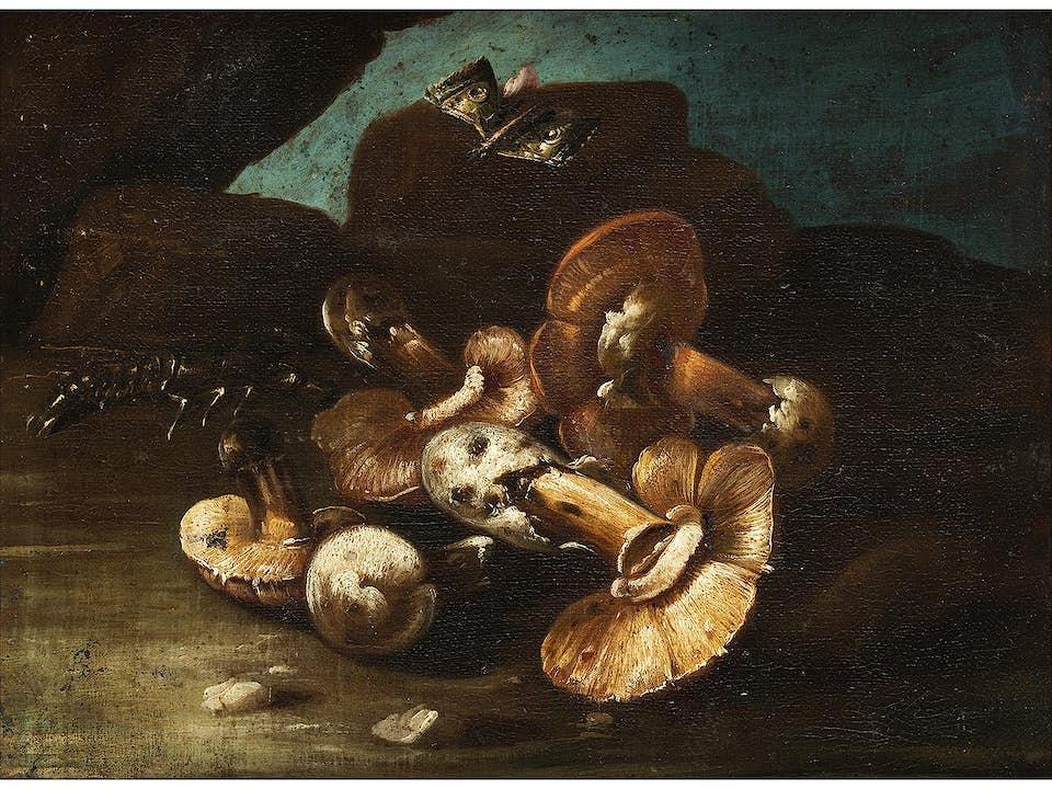 Otto Marseus van Schrieck, 1619 – 1678, Nachfolge des